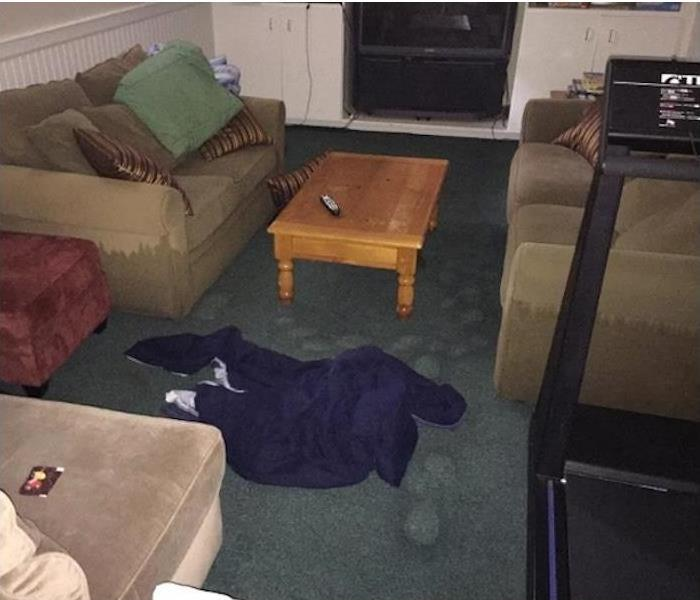 soaked carpet and furniture in a den