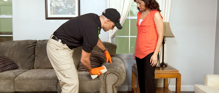 Glen Cove, NY carpet upholstery cleaning